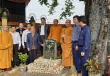 Cây thị 900 tuổi nằm trong khuôn viên chùa Đống Phúc- Quảng Ninh được công nhận là cây Di sản